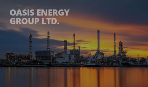 Oasis Energy Group